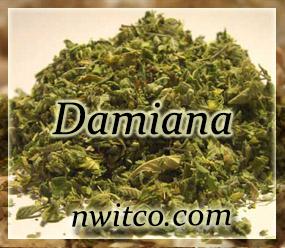 Damiania - Turnera diffusa